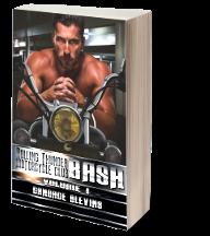 Bash V1 3d book_small